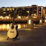 african blackwood acoustic guitar for sale