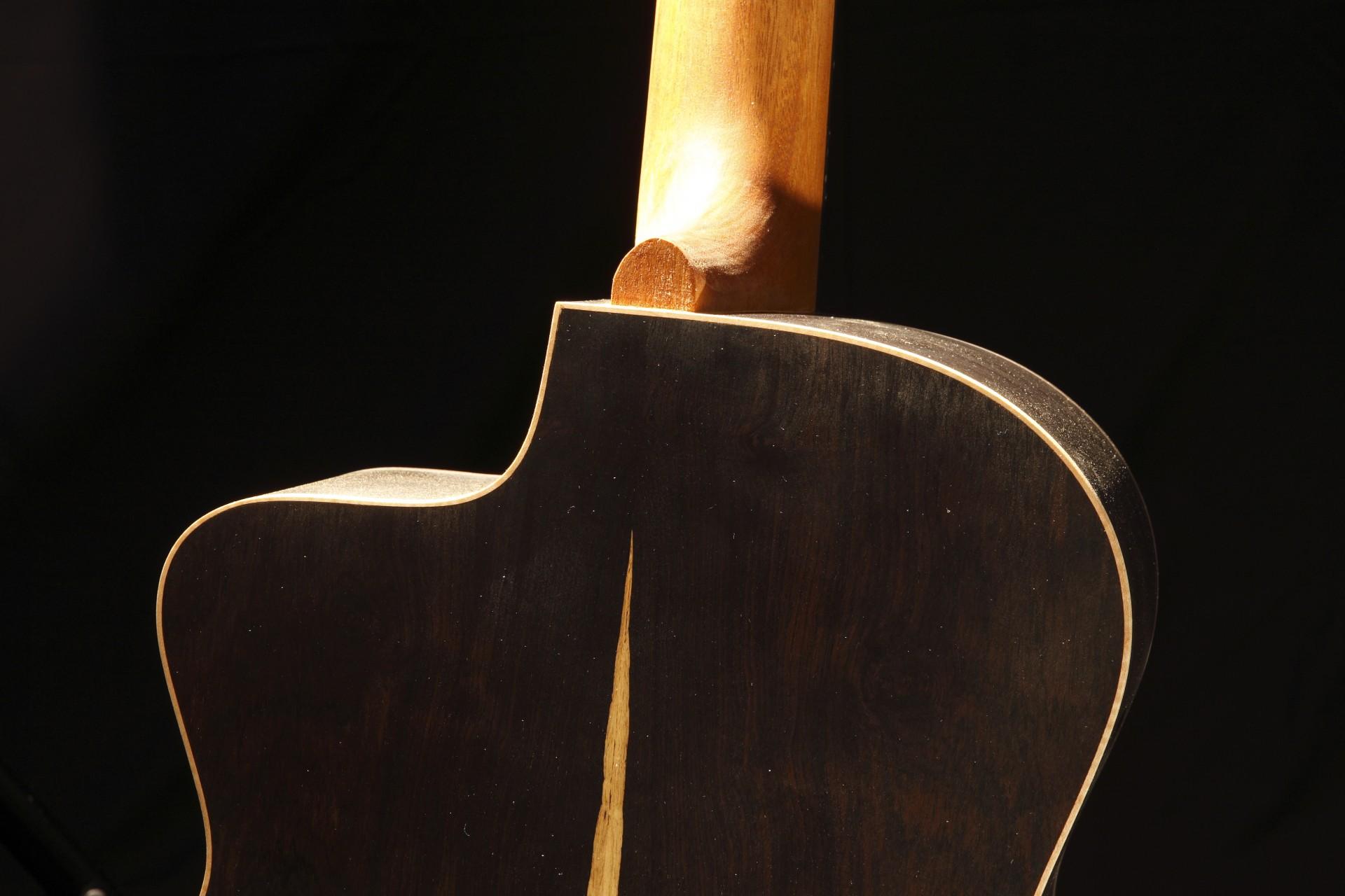 best african blackwood tonewood guitar