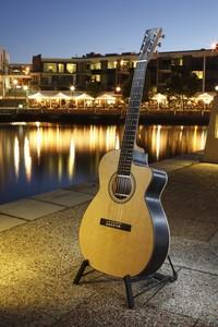 african blackwood tonewood guitar